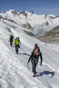 Haute-Route_Berner_Alpen_ber_ 5243.jpg